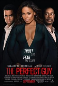 The Perfect Guy (2015) Español